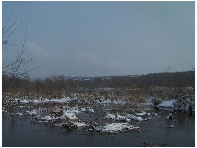 rzeka Bug zimą